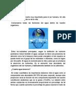 Importancia y Ciclo Del Agua_Scribd