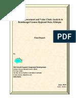 BG Market Assessment Final Report 300510