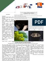 giornalino1