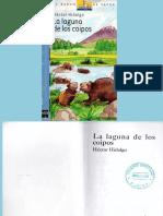 La Laguna de Los Coipos