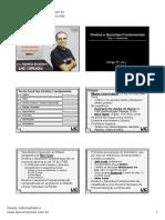 01 Belmonte Direitos Garantias Fundamentais Sistematizado-1