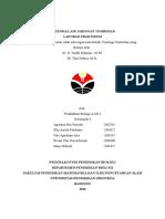 Potensial Air Jaringan Tumbuhan oleh Agustina Nur Fauziah 1303761