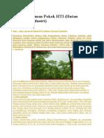 8 Jenis Tanaman Pokok HTI