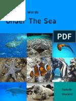 Aquatic Sight Word Book
