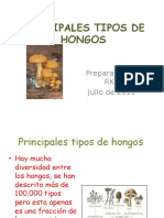 principalestiposdehongos-110731210419-phpapp01.pptx
