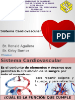 Anatomía Humana Introductorio Clase 4 2016 presentacion.pptx