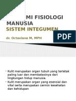 Kul 1_Sistem Integumen