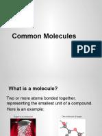 common molecules