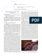 691_Molossus_sinaloae.pdf