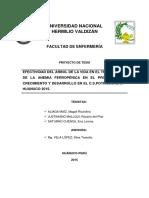 Tesis Efectividad Del Árbol de La Vida en El Tratamiento de La Anemia Ferropénica en El Programa de Crecimiento y Desarrollo en El c.s. Potracancha - Huánuco 2015