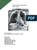 Gambaran Khas Radiologi Penyakit Sistem Respirasi