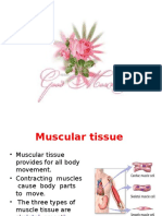 Muscular and Nervous Tissue