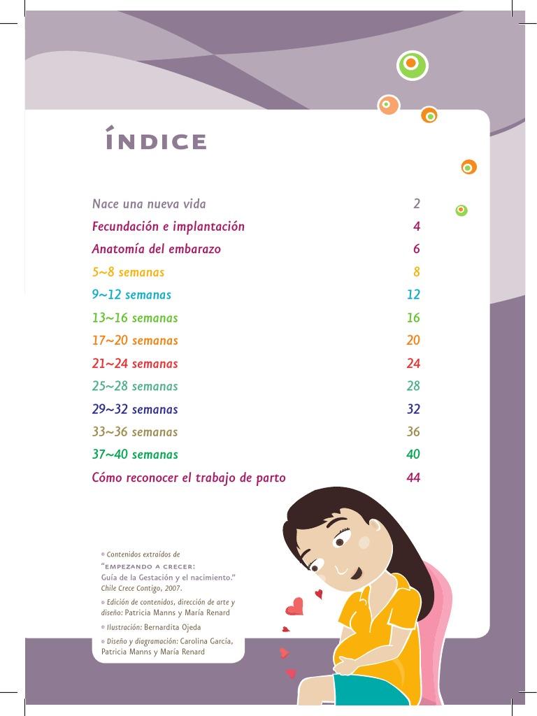 Lujoso 17 Semanas De Embarazo La Anatomía Ornamento - Imágenes de ...
