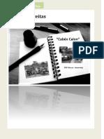 livrocabencalon-120629092509-phpapp02