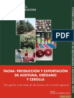 Produccion_Exportacion Aceituna Tacna 2013