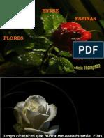 Flores Entre Espinas