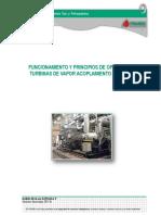 Manual 12 Turbinas.pdf