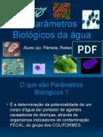 Parâmetros+Biológicos+da+água.ppt