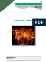 Manual 06 Combustibles y Combustión