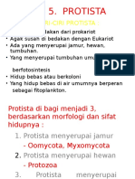 SK.2.3. =PROTISTA