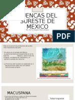 Cuencas Del Sureste de Mexico