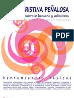Kit de Herramientas - Mcp Junio 2010