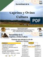 EZCCO - Rentabilidad de La Caprino y Ovino Cultura Zulia 2016