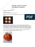 Physiological Disorders and Corrective Measures for Greenhouse Tomatoes