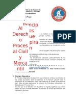 Principios-Procesales-Derecho-Procesal-Civil.docx