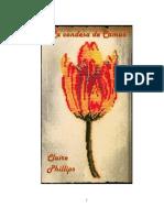 Claire Phillips - La condesa de Camus.pdf