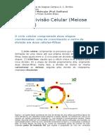 Ciclo e Divisão Celular 2