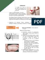 EMBARAZO (1).docx