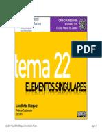 Tema 22 - Elementos singulares.pdf