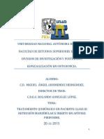 tesis_arismendiz_2013 (1)