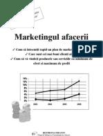 marketingul afacerii