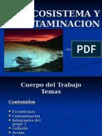 Grup1 Ecosistema y Contaminacion