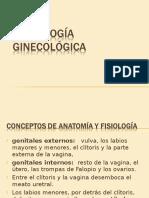semiologa-ginecolgica-1213548889766689-8