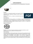 Carta Diagnostica