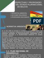 Politicasperspectivas y Prioridades Nacionales Del Estado Plurinacional De