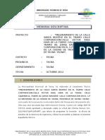 Memoria Descriptiva - CA. Santa Beatriz