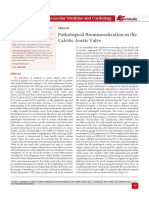 Pathological Biomineralization in the Calcific Aortic Valve