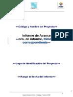 Modelo de Presentación de Informes de Avance 21-05-2015