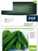 Cucumber Diseases - A Practical Guide to Identification & Control