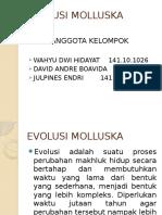 EVOLUSI MOLUSKA