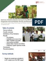 Summary of Nutrition Baseline Surveys for the BMZ