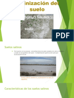 Salinización Del Suelo.pptx