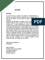 Informe Escrito de Los Movimas