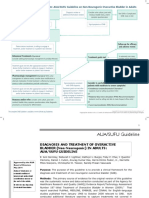 AUA Diagnosis and Treatment of Overactive Bladder - Algorithm (2014).pdf