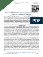 Parameter Adjustment of Pulse Coupled Neural Networks Based on White Pixels Evaluation