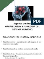Clase3fisiologiatecno
